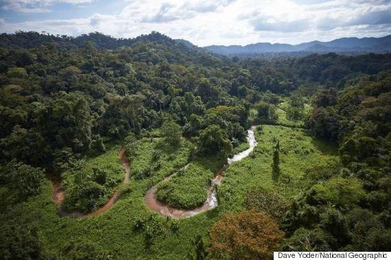 La foresta in Honduras in cui  si  nascondono le tracce di n'antica civiltà sconosciuta